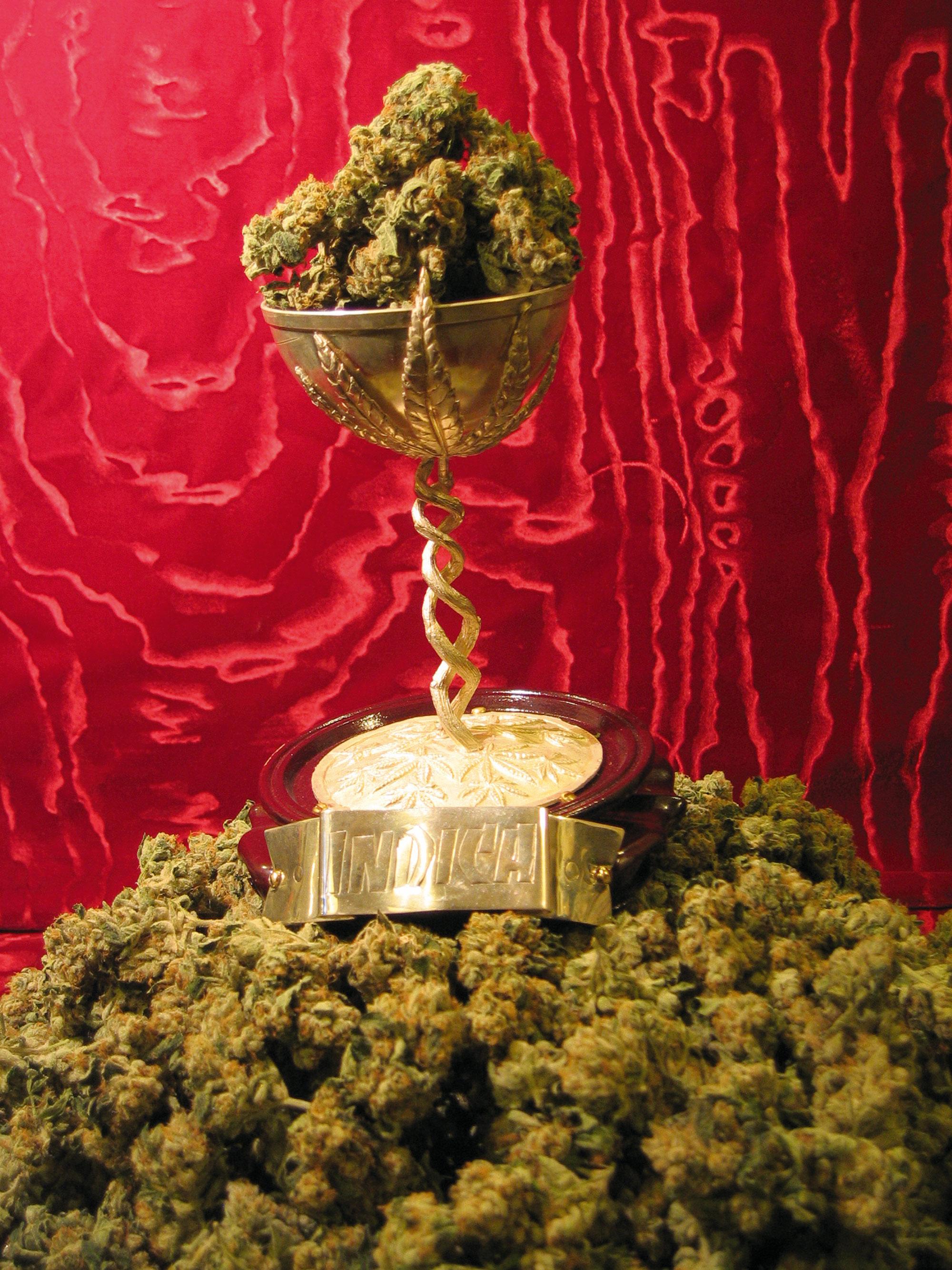 Cannabis-Cup-2013-001