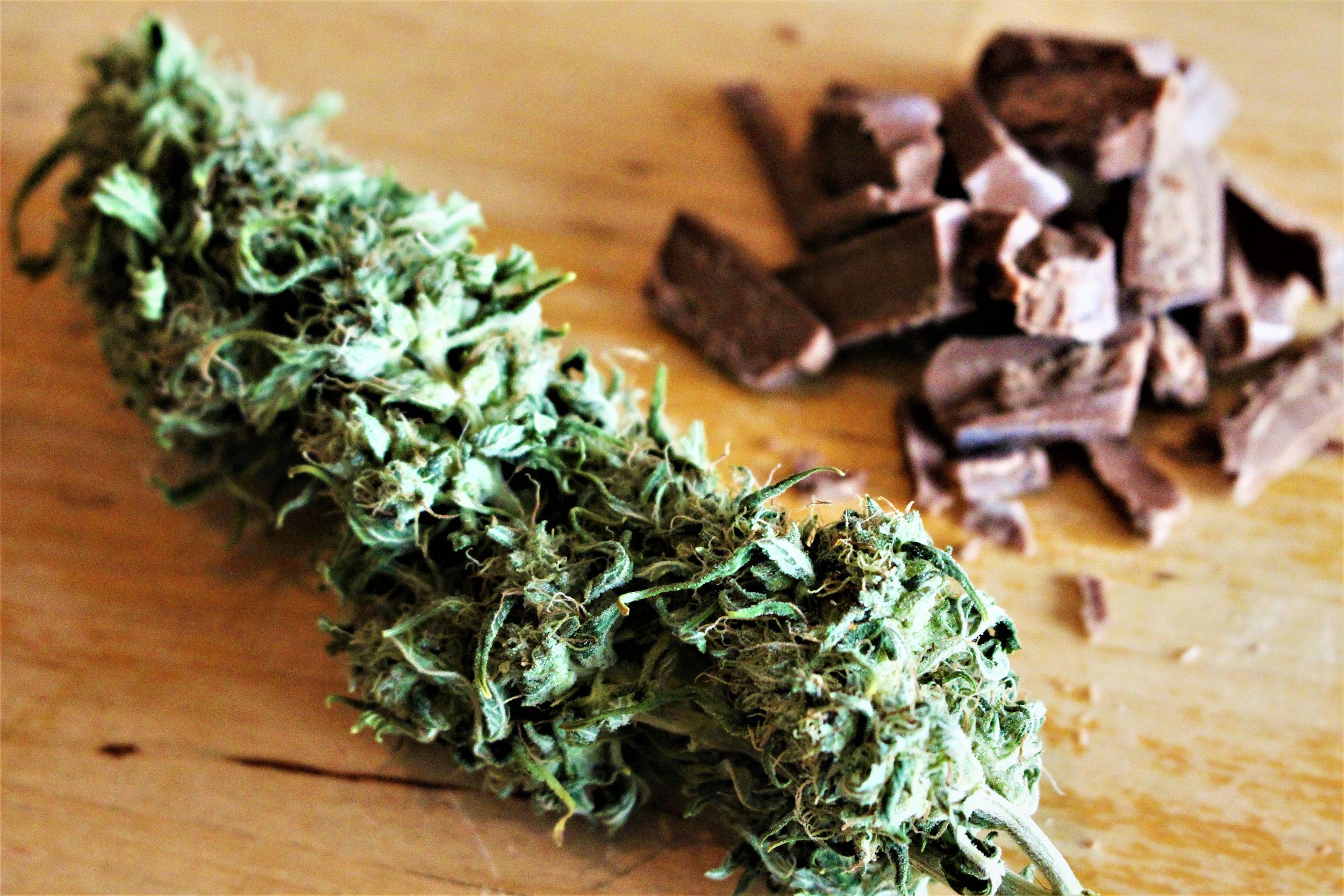 A-Cannabis-Love-Story-(02)