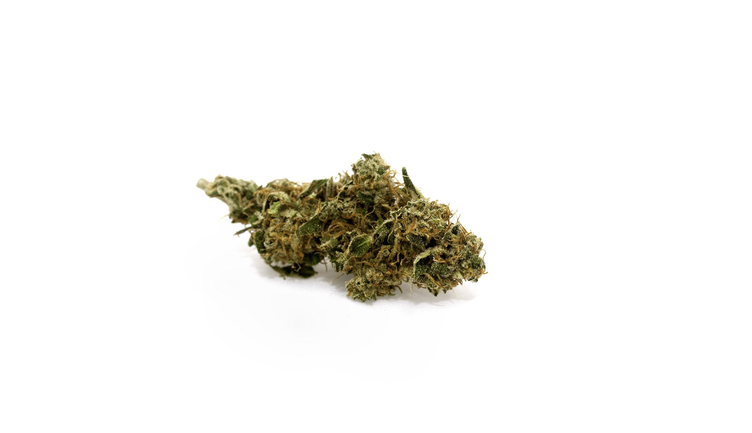 Untersuchung: Cannabis als Medizin