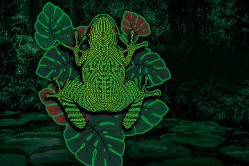 Kambô - Die Froschmedizin aus dem Amazonas