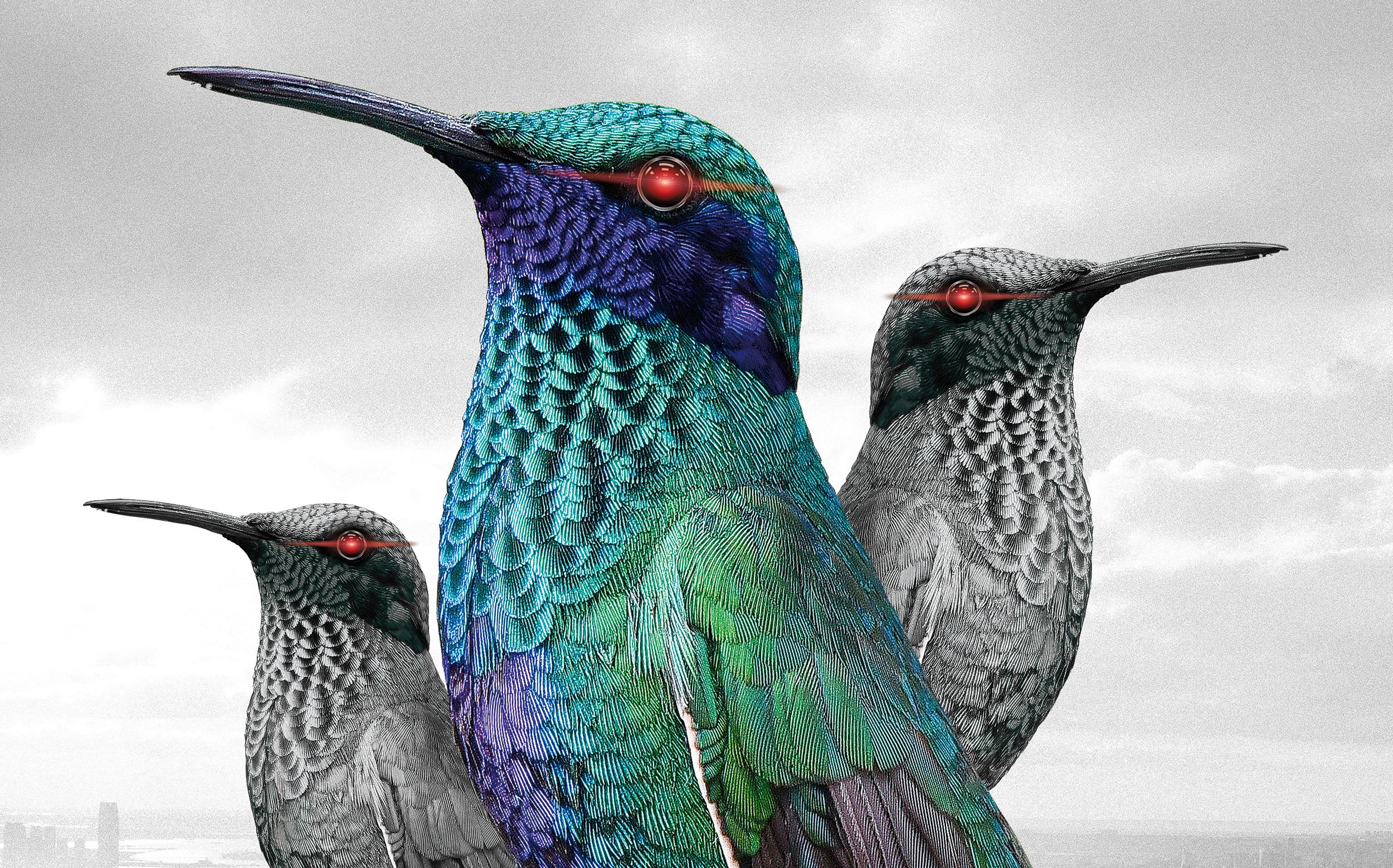 10 Birds-aren't-real_01